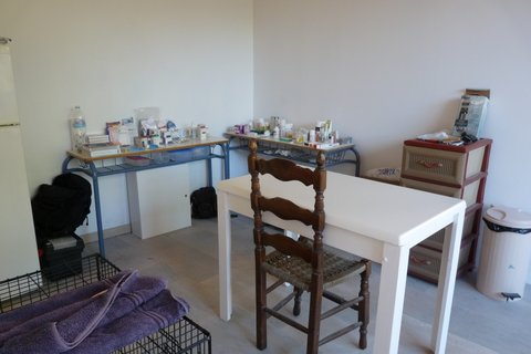 The Consultation Room